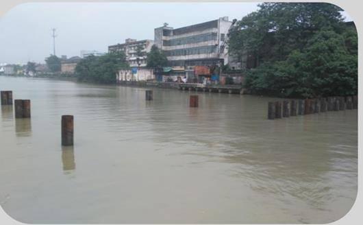 浙江京杭大运河塘栖段水体生态修复案例